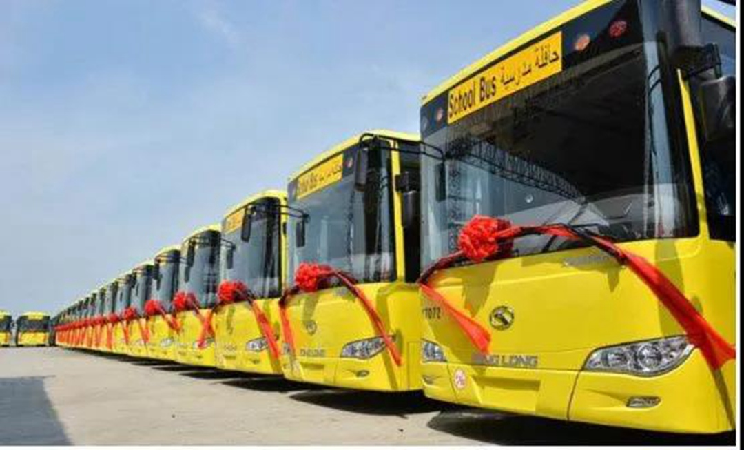 kinglong bus in SA